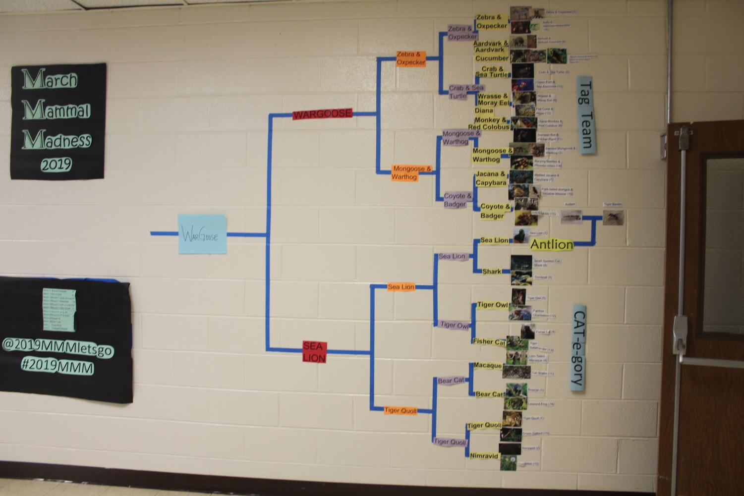 The+bracket+up+until+the+final+two+with+the+Tag+Team+and+the+Cat-e-Gory+sections+of+the+bracket.+