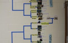 March Madness Hits the Science Department at AHS